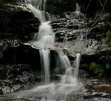 Leura Cascades ~ No 1 by Rosalie Dale