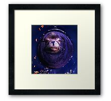 Sunbathing Beauty Framed Print