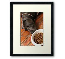 boring food... Framed Print