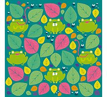 Frog Pattern Photographic Print