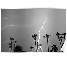 Black and white of a Lightning Storm and Tropical Palm Trees Poster