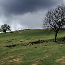 Hadrian's wall Milecastle England 198405260045 by Fred Mitchell