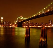 Pilings In East River New York by ScottL
