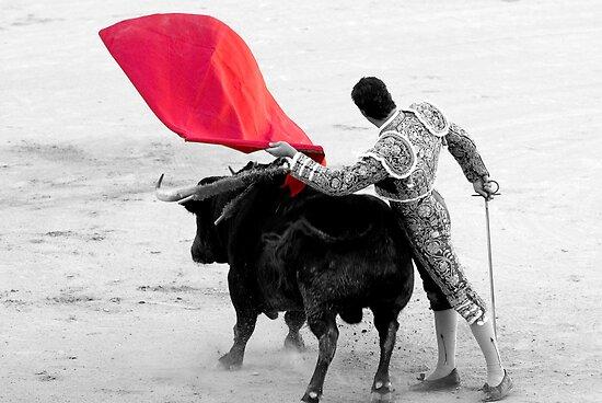 Matador and Bull. 2 by craigto