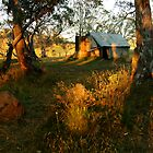 First Rays, Howitt Hut Victorian High Plains by Joe  Mortelliti