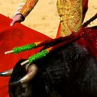 Matador and Bull Up Close. by craigto