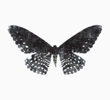 Grunge Butterfly Black by Ash Sivils