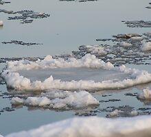 Ice 1 by Leanne Davis