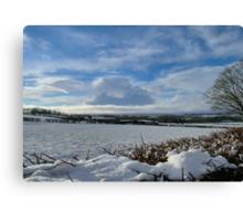 White Winter , Blue Winter Canvas Print