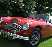 Austin Healey by barnsleysteve