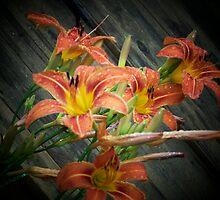 Tigrrrrr Lilies by Gene Cyr