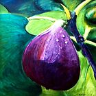 Fig by Candy Matthews