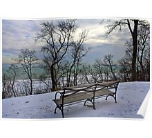 Bench With Lake View Poster
