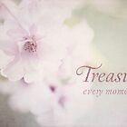 Treasure Every Moment by Anita Pollak