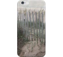 Vintage Seacoast iPhone Case/Skin