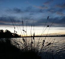 Dawn over Lake Wallaga by OZImage