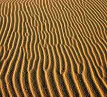 Sand pattern, Croajingalong National Park by Blue Gum Pictures