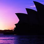A Sydney Morning in May by DebGillmore