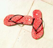 Flip Flops by smile4me