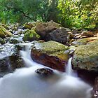 Cave Creek - Numinbah Valley Qld Australia by Beth  Wode