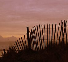Fence, Westward Ho!, Devon. by ThorBeverley