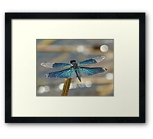 Another Jewel at the End of the World Framed Print