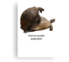 You're Turtley Awesome Canvas Print