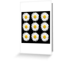 Nine Common Daisies Isolated on A Black Backgound Greeting Card