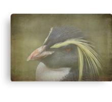 Rockhopper Penguins Bad Hair Day - Textured Canvas Print