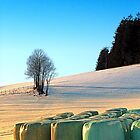 Hay bales in winter wonderland | landscape photography by Patrick Jobst