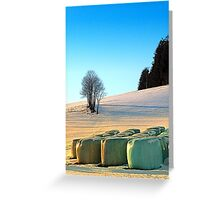 Hay bales in winter wonderland | landscape photography Greeting Card