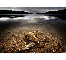 Surface Interruption-Loch Ness Photographic Print