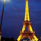The most photogenic of Paris by Laura Jane Coelho