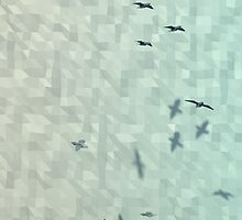Seagulls by Boudica-