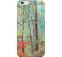 Nature's Colorful Spirit iPhone Case/Skin