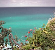 Stradbroke Island Cliff Walk by Helen Phillips