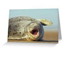 Laughing Seal Greeting Card