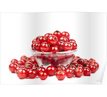 Redcurrant over white background Poster