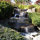 Japanese Gardens, Cowra by Jan Richardson