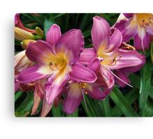 Flashy Lilies Canvas Print