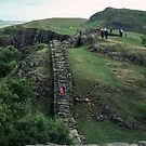 Looking east along Harrows Scar  Hadrian's wall Milecastle England 198405260051 by Fred Mitchell