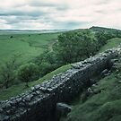Walker on Hadrian's wall England 198405260055 by Fred Mitchell