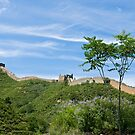 The Great Wall by dominiquelandau