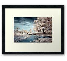 Dam Reflections Framed Print
