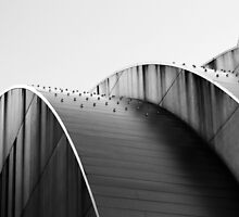 Kauffman Center Curves and Shadows Black and White by Catherine Sherman