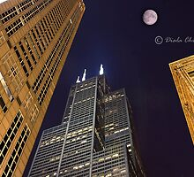 Sears Tower Chicago by Chinedu Diala
