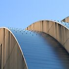 Kauffman Center Blue Curves by Catherine Sherman