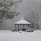 Gazebo in Winter by artgoddess