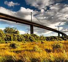 Erskine Bridge by Linda  Morrison
