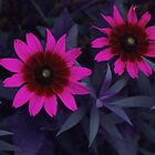Pair of Pink Posies by Tom  Reynen